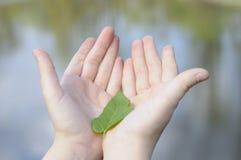 Mädchen, das ein Blatt in der natürlichen Umgebung anhält Lizenzfreie Stockfotografie