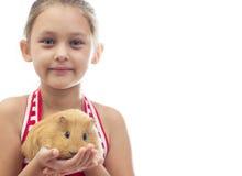 Mädchen, das ein Meerschweinchen hält Lizenzfreies Stockbild