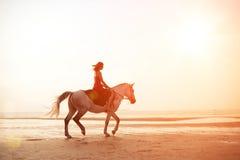 Mädchen, das ein Pferd auf den Hintergrund des Meeres reitet stockfotografie