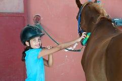 Mädchen, das ein Pferd pflegt Lizenzfreies Stockbild
