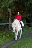 Mädchen, das ein Pferd reinigt Stockbild
