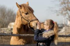 Mädchen, das ein vollblütiges Pferd im Stift für Koppel streicht lizenzfreie stockfotos