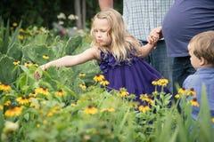 Mädchen, das eine Blume auswählt Lizenzfreie Stockfotos
