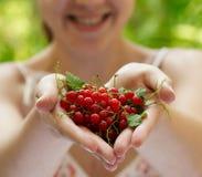 Mädchen, das eine Handvoll rote Johannisbeeren anhält Stockfotografie