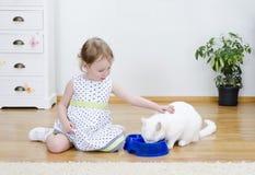 Mädchen, das eine weiße Katze speist Stockfotos