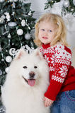Mädchen, das einen großen weißen Hund umarmt Stockbild