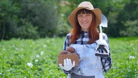 Mädchen, das einen Korb von frischen organischen Kartoffeln hält stock footage
