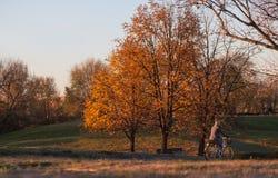 Mädchen, das ihr Fahrrad auf den Weg eines Parks auf unscharfem buntem a reitet stockbild