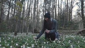 Mädchen, das im Frühjahr Wald der Blumen sammelt stock footage