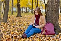 Mädchen, das im Herbstpark sitzt und über ihr Leben mit schreibt Stockfotos