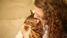 Mädchen, das mit Bengal-Katze umarmt und spielt lachen stock footage