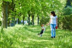 Mädchen, das mit einem Hund im Park spielt In den Händen des Stockes stockbild