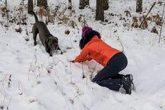 Mädchen, das mit einem Hund im Wald spielt stockbild