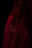 Mädchen, das mit rotem Gewebe aufwirft Stockfoto