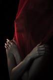 Mädchen, das mit rotem Gewebe aufwirft Stockbild