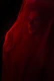 Mädchen, das mit rotem Gewebe aufwirft Lizenzfreie Stockbilder