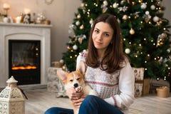 Mädchen, das mit Welpe Waliser-Corgi-Wolljacke auf dem Hintergrund des Weihnachtsbaums und des Kamins spielt stockbild