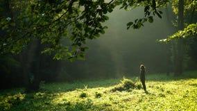 Mädchen, das am Morgenwald nach dem Regen steht stock video