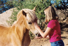 Mädchen, das Pferd petting ist Stockbilder
