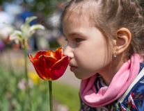 Mädchen, das rote Tulpe gegen blumigen Hintergrund des Frühlinges riecht lizenzfreie stockfotos