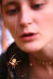 Mädchen, das Spinnenweb betrachtet Stockbilder