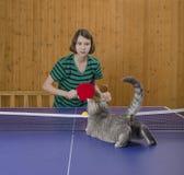 Mädchen, das Tischtennis mit einer Katze spielt Stockfotos