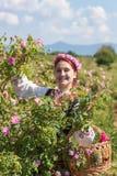 Mädchen, das während des Rosen-Sammelnfestivals in Bulgarien aufwirft Lizenzfreie Stockfotografie