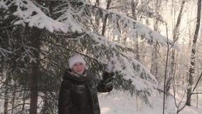 Mädchen, das in Winterpark geht Stellt den Schnee von den Bäumen zurück Unterhaltung draußen im Winter stock footage