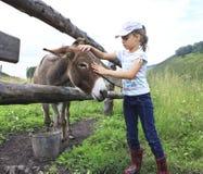 Mädchen, das zart einen Esel streicht. Stockfotos