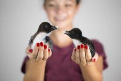 Mädchen, das zwei Pinguinküken hält lizenzfreies stockfoto