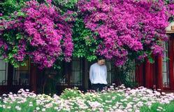 Mädchen in den Blüten von Bouganvilla spectabilis Lizenzfreies Stockbild