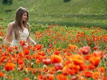 Mädchen in den Mohnblumen Stockfoto