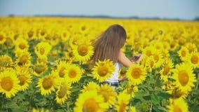 Mädchen in den Sonnenblumenblumen stock video
