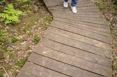 Mädchen in den Turnschuhen und in den Jeans gehend entlang ökologischen hölzernen Weg stockfoto