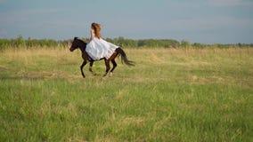 Mädchen in den weißen Kleiderbräuten, die zu Pferd über das Feld galoppieren stock video footage