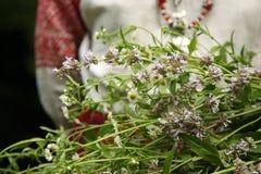 Mädchen in der slawischen Kleidung mit einem Blumenstrauß von Gänseblümchen lizenzfreie stockbilder