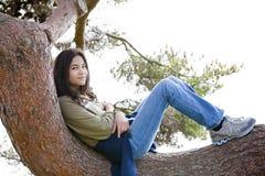 Mädchen des jungen jugendlich, das auf Baumglied sich entspannt stockbilder