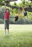 Mädchen, die am Baumast hängen Stockfotografie