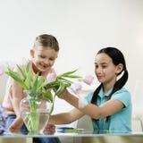 Mädchen, die Blumen betrachten Stockbild