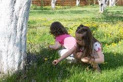Mädchen, die Blumen am Garten erfassen Lizenzfreie Stockfotos