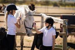 Mädchen, die das Pferd in der Ranch pflegen stockfotos