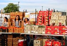 Mädchen, die Erzeugnis am Landwirt-Markt verkaufen lizenzfreie stockfotos