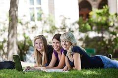 Mädchen, die Laptop verwenden Stockbild