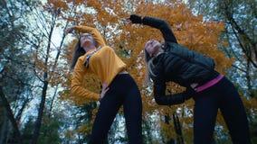 Mädchen, die synchron Gymnastik im Herbstpark aufwärmen und tun Abschluss oben stock footage