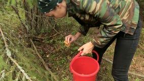 Mädchen fand einen Pilz im Wald stock video