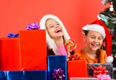 Mädchen feiern neues Jahr, haben Spaß Kinder in den Sankt-Hüten stockfotografie