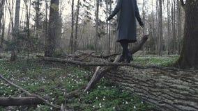 Mädchen geht auf den gefallenen Baum stock video footage