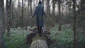 Mädchen geht auf den gefallenen Baum stock footage