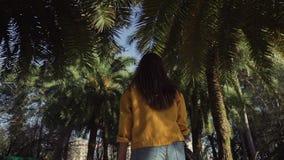 Mädchen geht langsam unter die starken Kronen von Palmen an einem warmen, sonnigen Tag stock video footage