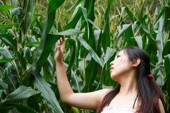 Mädchen genießen Natur Lizenzfreie Stockbilder